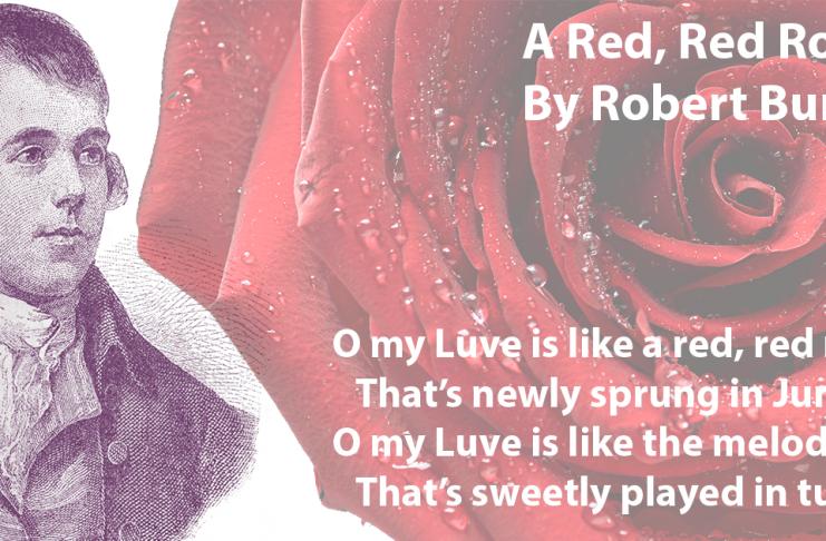 Robert Burns - A Red, Red Rose